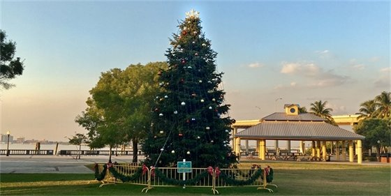 Centennial Park Christmas Tree