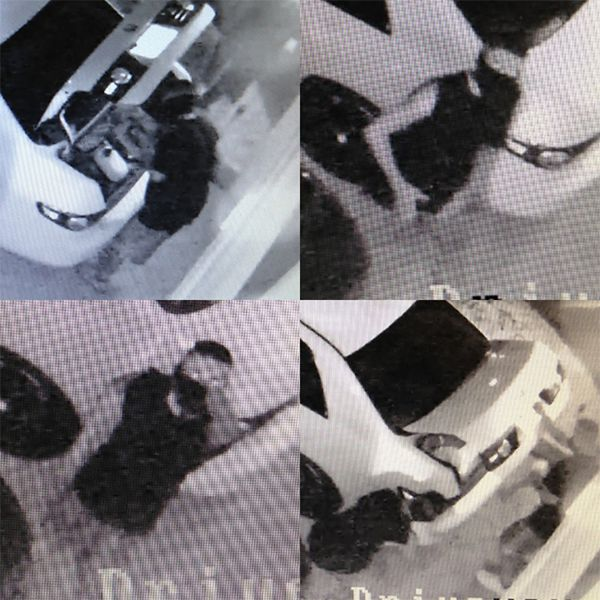 Police Still Looking to Identify Vehicle Burglary Suspects